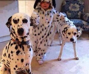 dog, baby, and dalmatian image