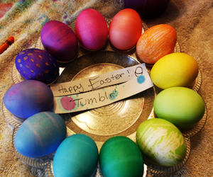 eggs, color, and rainbow image