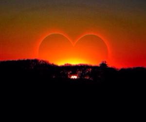 heart, love, and sun image