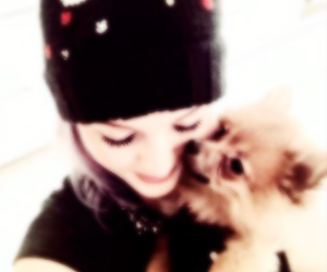 perrie edwards, little mix, and hatchi image