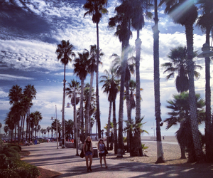 beach, los angeles, and palm trees image