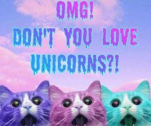unicorn, cat, and OMG image