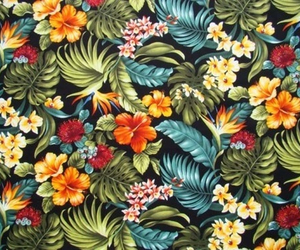 background, flowers, and hawai image