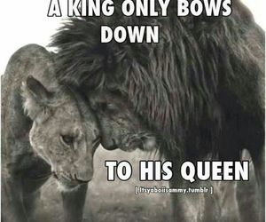like, respect, and royalty image