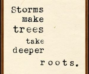 quotes, storm, and tree image