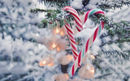 Christmas Photography Abstract Background Wallpapers
