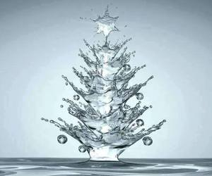 christmas, water, and tree image