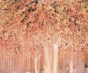 pink, pretty, and flowers image