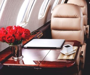 luxury, flowers, and plane image