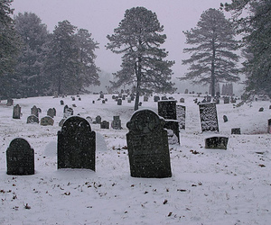 cemetery, colonial, and december image