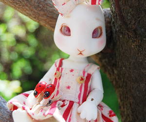 bjd, bunny, and doll image