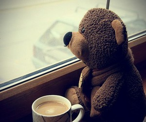 bear, coffee, and cup image