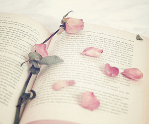 <33, book, and rose image