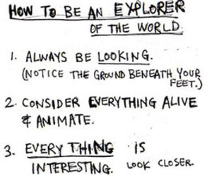explore, explorer, and life image