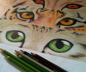 eyes, animal, and drawing image