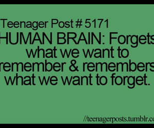 teenager post, brain, and true image