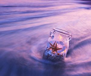 sea, photography, and starfish image