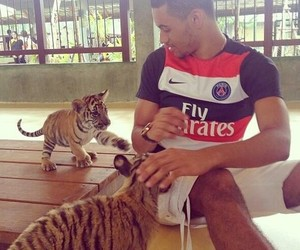 psg, boy, and tiger image