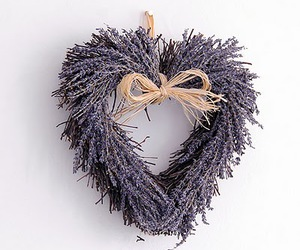 heart, purple, and white image