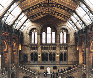london, natural history museum, and natural science museum image