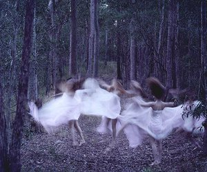 dance, forest, and nature image