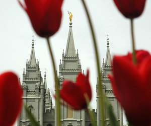 faith, flowers, and salt lake image