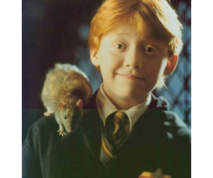 ron weasley and rupert grint image