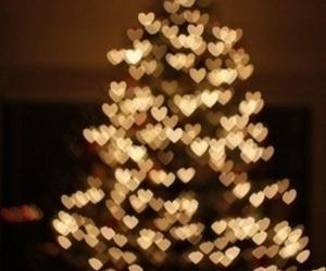 christmas, light, and tree image