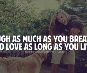 love, dog, and laugh image
