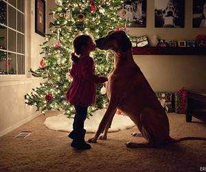 dog, christmas, and kiss image
