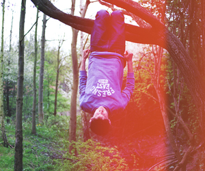 boy, hanging, and tree image