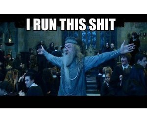 dumbledore and harry potter funny image
