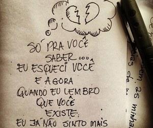 brasil, tumblr, and monomania image