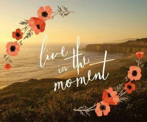 life, live, and moment image