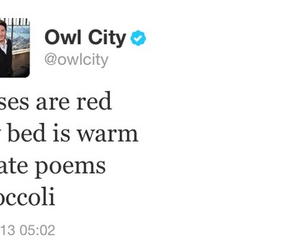 Owl City, poem, and Adam Young image