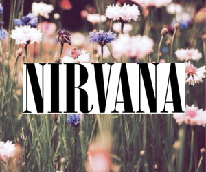 nirvana, flowers, and band image
