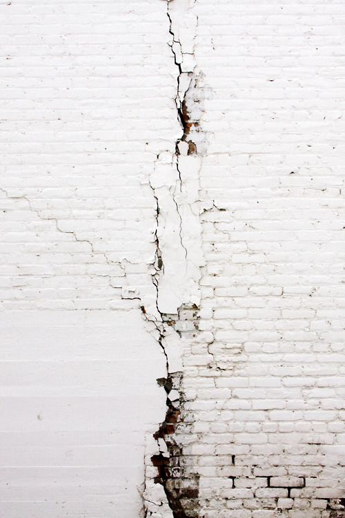 wall, white, and photography image