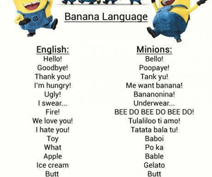 minions, language, and despicable me image