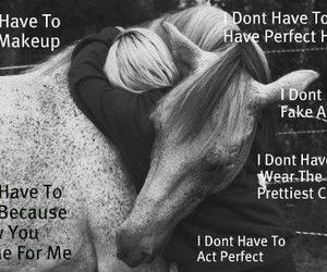 horse, love, and quote image