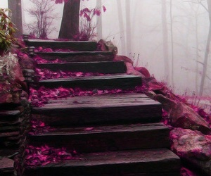 pink, stairs, and purple image