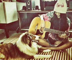 dog, guitar, and hippie image