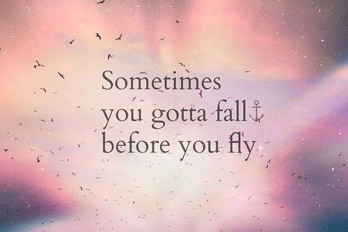 fly, quotes, and fall image