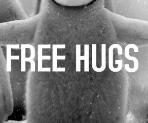 cold, free, and hugs image