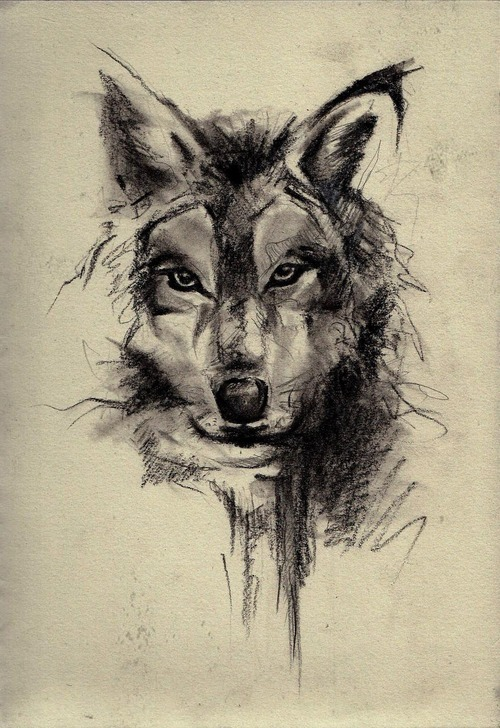 Canines Wolf Wolves Tattoo Uploaded By Kristina Mihailova