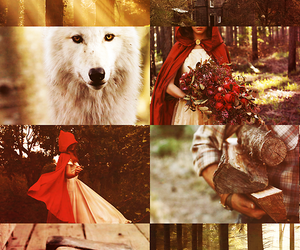 fairy tale, fairytale, and little red riding hood image