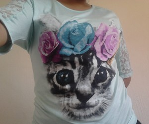 cat, cute, and clothe image