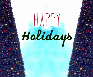 christmas, happy holidays, and holiday image