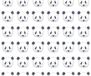 background, panda, and pattern image