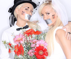 :), noh8, and same sex marriage image