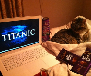bed, girly, and titanic image